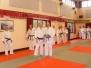 2008 Annual Senior Presentations